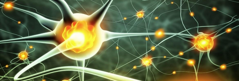 Die Wissenschaft hat so viel Bücher und Artikel veröffentlicht – es wird Zeit, dass das Wissen Therapeuten und Patienten auch erreicht!